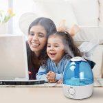 Humidificateur automatique - les meilleurs produits TOP 1 image 5 produit