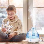 Humidificateur d air ; votre comparatif TOP 11 image 6 produit