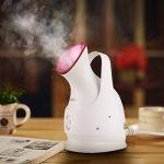 Humidificateur vapeur - trouver les meilleurs modèles TOP 2 image 2 produit