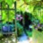 Klarstein Mini Taverna Mini frigo • Glacière électrique design vintage • 4 litres de volume issu de la série Taverna Bella en argent • Secteur ou allume-cigare 12V • Étagère et porte-tablette amovible • Faible poids et poignée • Argent de la marque Klarst image 12 produit