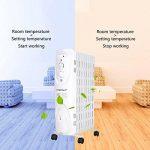 Notre comparatif : Radiateur bain d huile TOP 1 image 3 produit