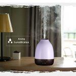 Votre comparatif de : Humidificateur air chaud TOP 12 image 2 produit