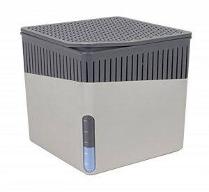 WENKO 50221100 Absorbeur d'humidité Deluxe Cube 1000 g gris de la marque Wenko image 0 produit