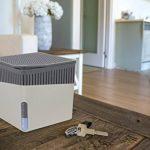 WENKO 50221100 Absorbeur d'humidité Deluxe Cube 1000 g gris de la marque Wenko image 3 produit