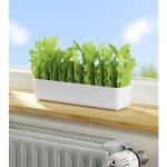 """Wenko 52601900 Humidificateur d'air """"jardin"""", 1pièce, blanc de la marque Wenko image 1 produit"""