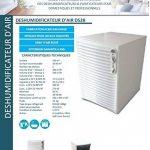 Wood's DS28 Déshumidificateur d'Air DS28, 270 W, Blanc de la marque Wood's image 4 produit